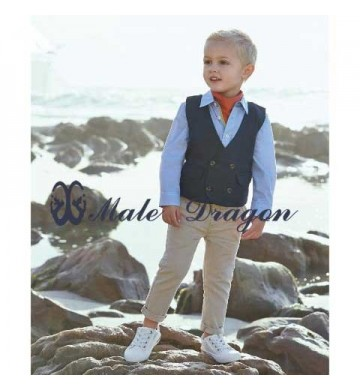 Stelan Male Dragon Navy Vest 3in1